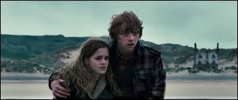 Quelle est la seule phrase juste à propos du premier baiser de Ron et Hermione ?