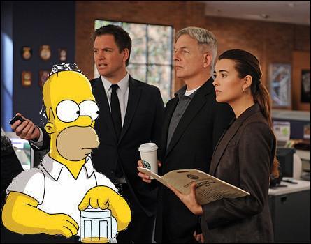 Me voilà, colonel Homer, officier dans la marine. Je suis nouveau dans l'équipe pour résoudre les affaires criminelles liées à la marine. Je suis dans...