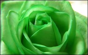 Comment dit-on  vert  en anglais ?
