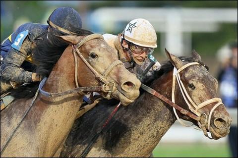Comment appelle-t-on une course hippique, généralement réservée aux chevaux de 3 ans, dont la première eut lieu à Epsom en 1780 ?