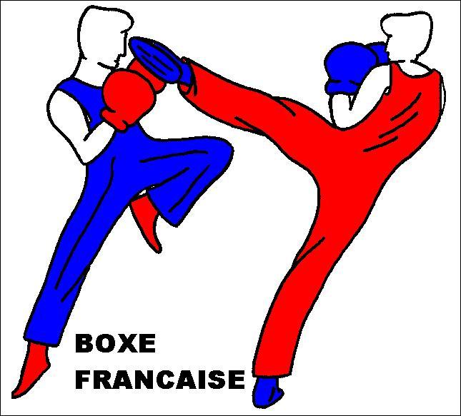 Quel autre nom donne-t-on à la boxe française ?