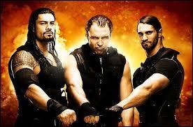 A quand remonte la formation officielle de The Shield ?
