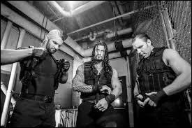 Lors de Wrestlemania 29, qui affrontèrent The Shield ?