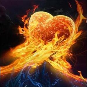 Le cœur de _____ est bien utile pour fabriquer des baguettes magiques !