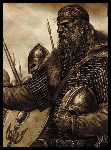 Que sont les Vikings ?