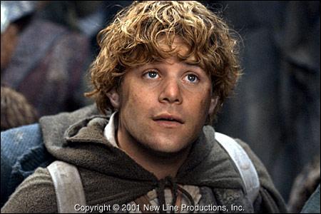 L'indéfectible ami de Frodon :