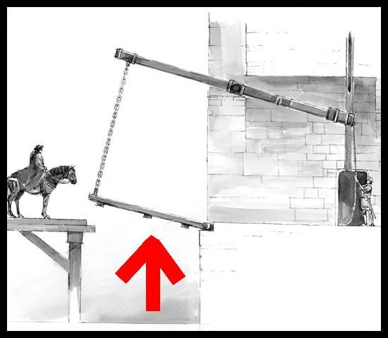 Sur cette illustration, comment s'appelle la chose qui est désignée par une flèche ?