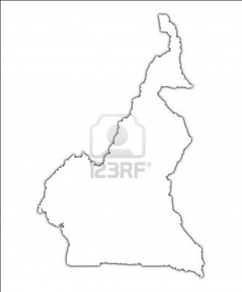 Quel pays représente cette carte muette ?
