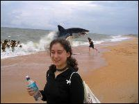 Regardez derrière vous ! Des chercheurs ont établi que le nombre de requins tués par les Hommes par an est d'environ :
