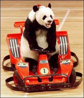 Un transport non polluant pour les pandas ? C'est une organisation non gouvernementale écologique ayant un panda pour emblème :