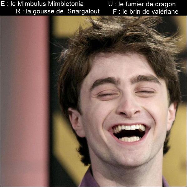 Dernière partie : trouvez la réponse grâce aux images... Ron est un génie ! Il arrive à faire rire tout le monde. Quelle blague vient-il de raconter à Harry ?  La harpie, le guérisseur et...