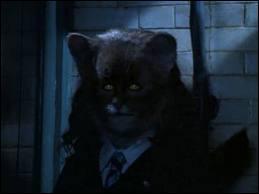 En qui Hermione voulait-elle se transformer en prenant du polynectar ?