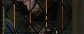 Comment Ron va-t-il chercher Harry ?