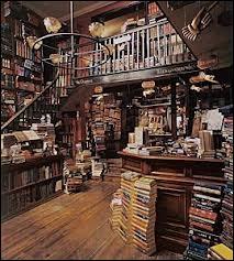 Qui Harry, Ron et Hermione rencontrent-ils à la boutique Fleury et Bott qu'ils n'ont jamais rencontré(e) ?