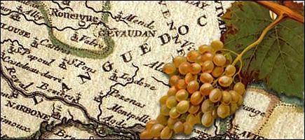 Sortons des départements de l'ouest de la France. Je vous propose une Clairette-du-Languedoc pour accompagner les pommes au four. D'où vient ce vin blanc généreux, à la robe jaune soutenu ?