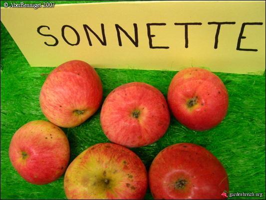 Les trois variétés de pommes  Pépin Sonnant, Sonnette et Grelot  ont la même caractéristique. Laquelle ?