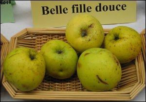 Belle Fille Douce  est une pomme à deux fins. Pourquoi l'appelle-t-on ainsi ?