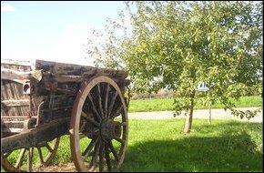 La pomme  Monte en l'Air Long Rayé  n'est pas une grande variété cidricole, mais elle se conserve plutôt bien. Pour quelle raison cette variété porte-elle ce nom étrange ?