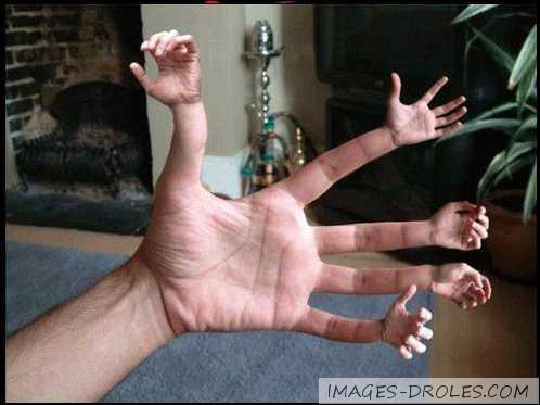 Sur les 2 mains, combien a-t-on de phalanges ?