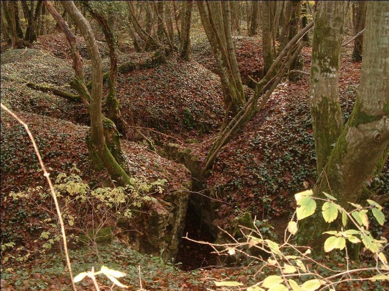 À quelle date l'armée allemande lance-t-elle l'attaque sur Verdun ?