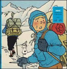 De quelle nationalité est Tintin ?