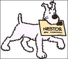 Qui est Nestor ?