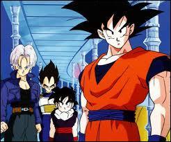 Combien de fils ont Sangoku et Chichi ?