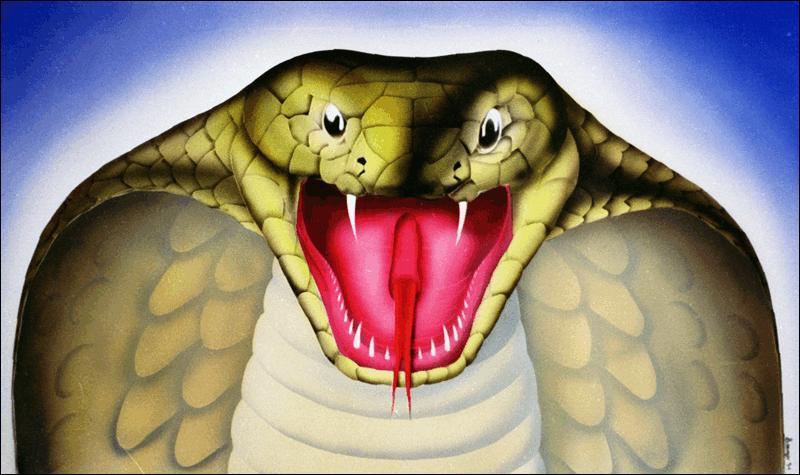 Quel moyen utilise cet artiste pour nous présenter ce cobra ?