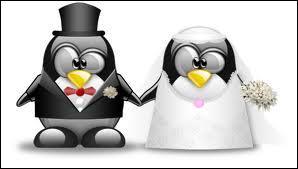 Qui est en couple ?