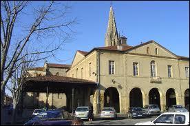 La commune Midi-Pyrénéenne de Trie-sur-Baïse se situe dans le département ...