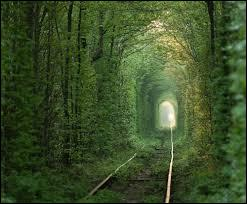 Un petit tour par le tunnel de __________ en ________ :