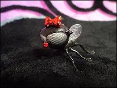 Comment s'appelle sa mouche ?