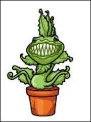 Comment s'appelle cette plante carnivore ?
