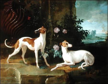 Huile représentant  Misse and Turlu , deux chiens de race Greyhound ayant appartenu à Louis XV. Qui en est l'artiste, né en 1686 ?