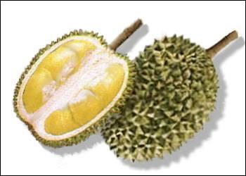 En Asie du Sud-est, on l'appelle  le roi des fruits  et pourtant il pue ! Quel est ce fruit ?