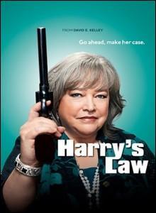 Quelle actrice de talent tient le rôle principal dans la série policière américaine  La loi selon Harry  ?