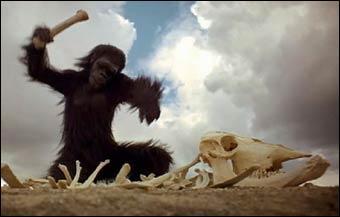 Dans cette célèbre scène du film  2001, l'Odyssée de l'espace , que découvre cet australopithèque ?
