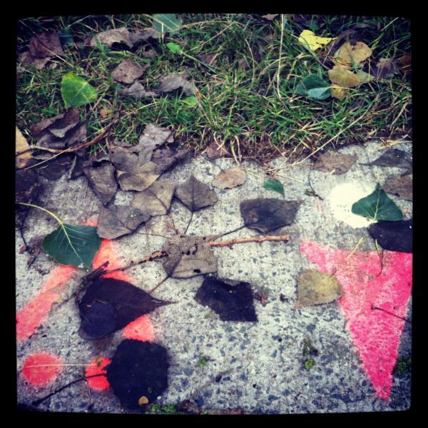 Le voilà, il est là, c'est l'automne. Comment dit-on  automne  aux États-Unis ?
