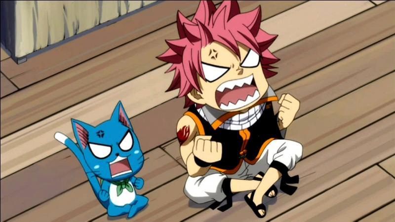 Qui est le meilleur ami de Natsu (petit indice il le suit tout le temps) ?