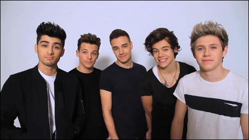 Lequel est le plus beau et parfait ?