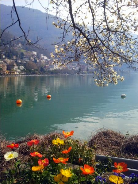 Un célèbre festival a lieu chaque année dans cette localité bordant le lac Léman. Lequel ?