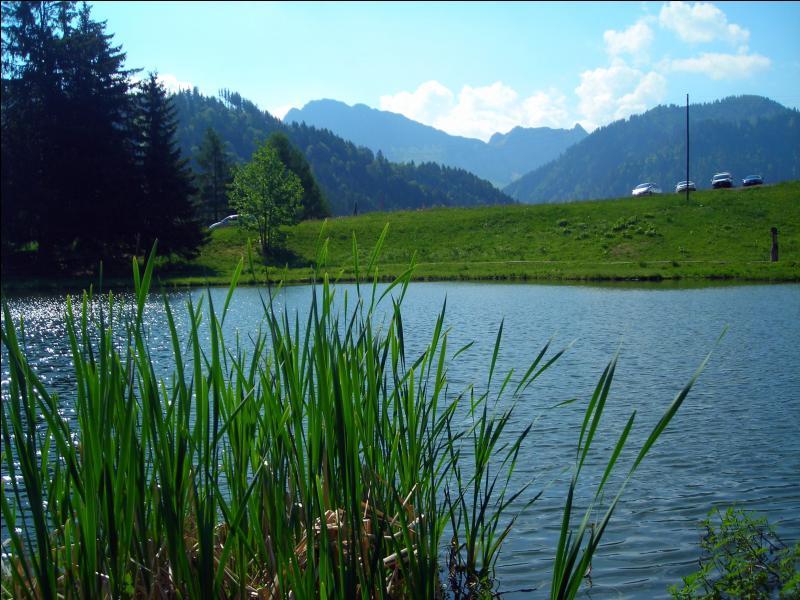 Quel lac des Préalpes voit-on sur cette photo ?