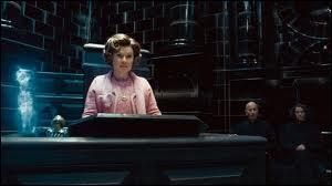 Dans le film Harry Potter 6, on peut voir quelque chose représentant cette femme dans le magasin des jumeaux. Quoi ?