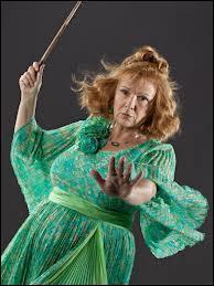 Parlons de la mère courageuse qui a réussi à faire disparaitre définitivement la plus grande de mangemorts... Bien sûr je parle de Molly Weasley ! Qui fait partie de sa famille ?