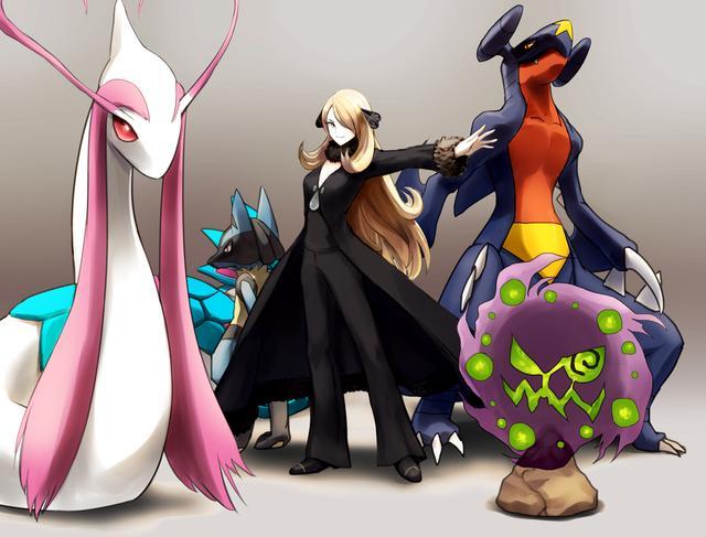 Pokemon : Les champions d'arènes
