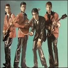 Qui a interprété la chanson :  C'est pas sérieux  avec le groupe  Les chats sauvages  ?