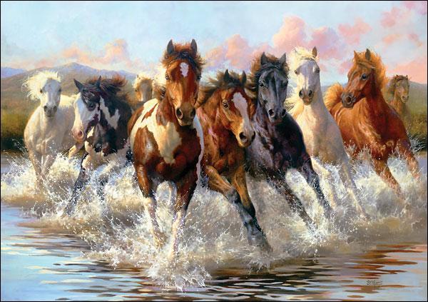 Quelle est la hauteur minimale pour un cheval ?