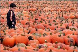 En Russie, il est interdit de célébrer Halloween dans les écoles de Moscou :