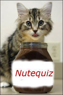 Bon appétit ! Il y a une chose que j'adore, le chocolat ! D'ailleurs, où a-t-on inventé le chocolat au lait ?
