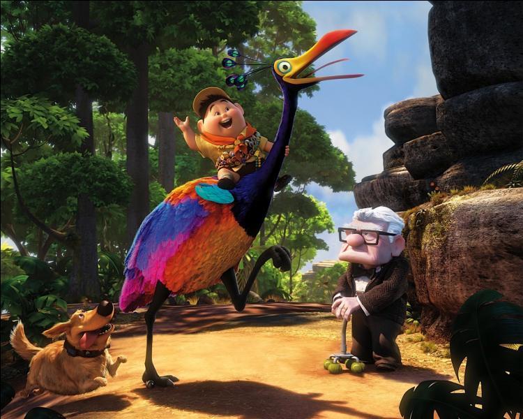 Dans  Là-haut , comment s'appelle l'oiseau rare ?